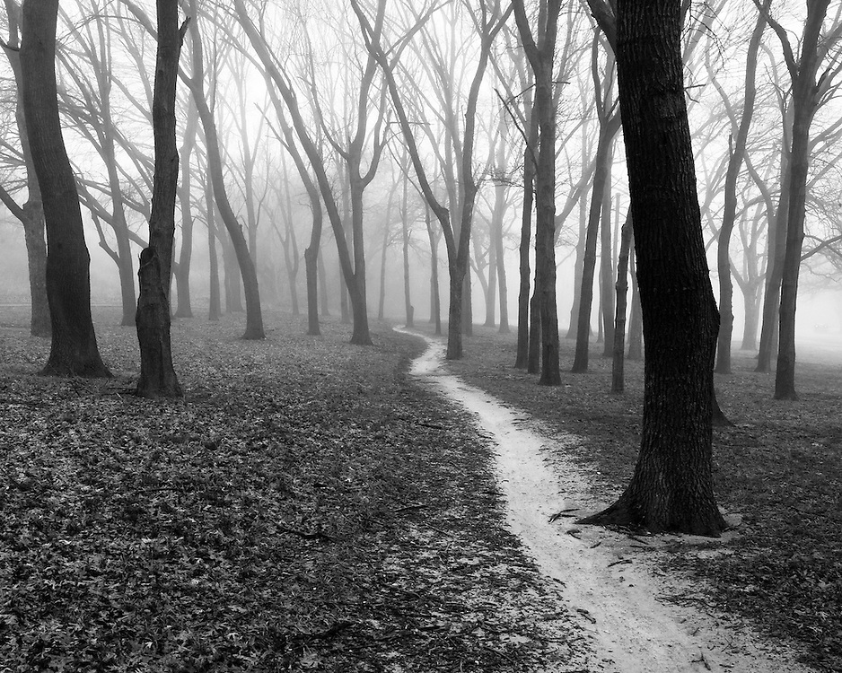 A walking path cuts through the fog at White Rock Lake, Dallas, Texas