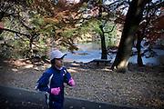 (En) Tokyo, November 2009 - In the house of Japanese writer Akira Yoshimura, near Kichijoji's Inokashira Park. <br /> The park.<br /> <br /> (Fr) Dans la maison de l'&eacute;crivain japonais Akira Yoshimura, pr&egrave;s du parc Inokashira dans le quartier de Kichijoji.<br /> Le parc.