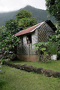 Thatched house, Hanavave, Island of Fatu Hiva, Marquesas Islands, French Polynesia<br />