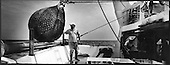 pescatori fischermen