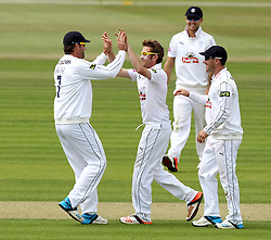 Hampshire's Liam Dawson celebrates taking the wicket of Somerset's Tom Abell - Photo mandatory by-line: Robbie Stephenson/JMP - Mobile: 07966 386802 - 21/06/2015 - SPORT - Cricket - Southampton - The Ageas Bowl - Hampshire v Somerset - County Championship Division One