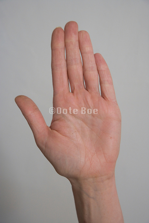 A woman?s hand with the palm out