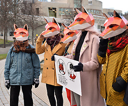 Campaigners wearing fox masks demonstrated outside the Scottish Parliament in Edinburgh ahead of the public consultation on the proposed bill to outlaw fox hunting.<br /> <br /> © Dave Johnston/ EEm