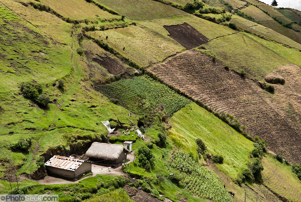 A checkerboard of farm, crop and ranch land climbs a steep hill near the Black Sheep Inn, near the village of Chugchilan, located 1.5 hours from Lago Quilotoa, in Ecuador, South America.