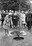 Belgian Royal Visit - King Baudouin and Queen Fabiola plant a tree in  the grounds of Áras an Uachtarain, helped by President Eamon De Valera..17.05.1968