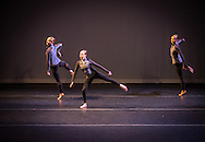 Boston Contemporary Dance Festival at the Paramount Theatre. Boston, MA 8/17/2013 Jaclyn K. Walsh