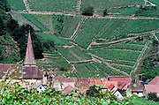 Frankrijk, Elzas, 7-7-2002..Het stadje Ingelsheim. wijnbouw, druiventeelt, wijnstok, economie, wijnproductie..Foto: Flip Franssen/Hollandse Hoogte