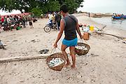 Traditional fishermen bring in and sell the fish on the market they catched in their small boats on sea in the village of Reboh, Bangka Belitung Islands, Indonesia. Fishing decreased due to the tin mining on the open sea.Bangka Island (Indonesia) is devastated by illegal tin mines. The demand for tin has increased due to its use in smart phones and tablets.<br /> <br /> Les pêcheurs traditionnels apportent et vendent du poisson sur le marché, poisons pêchés dans leurs petits bateaux sur la mer, village Reboh, îles Bangka Belitung, Indonésie. La pêche diminue à cause de l'exploitation sous martine de l'étain. L'île de Bangka (Indonésie) est dévastée par des mines d'étain sauvages. la demande de l'étain a explosé à cause de son utilisation dans les smartphones et tablettes.