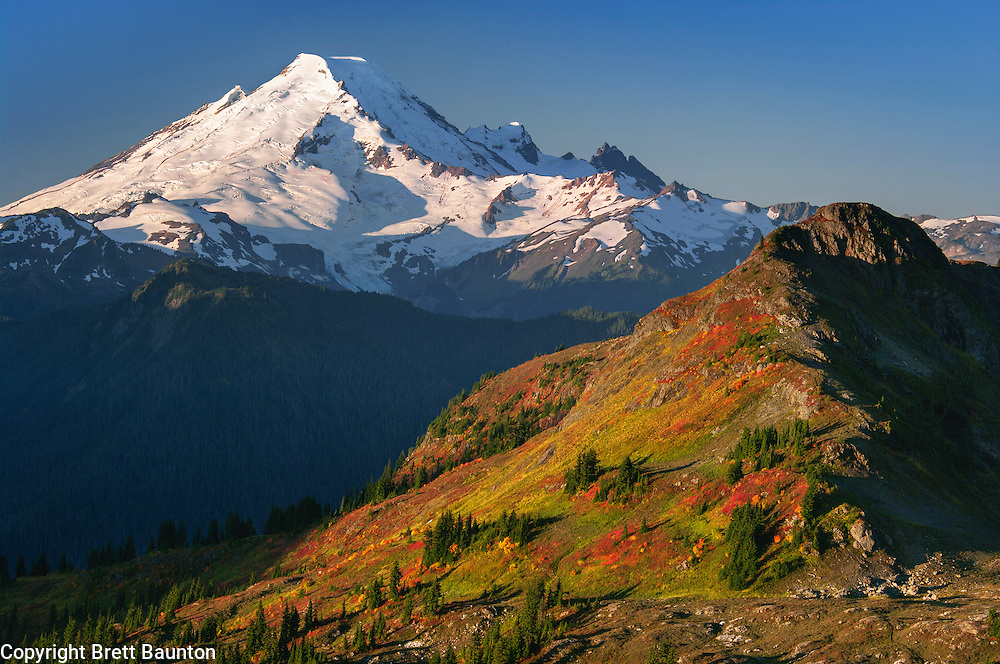 Fall; Mt. Baker Wilderness Area; North Cascades; WA; Yellow Aster Butte