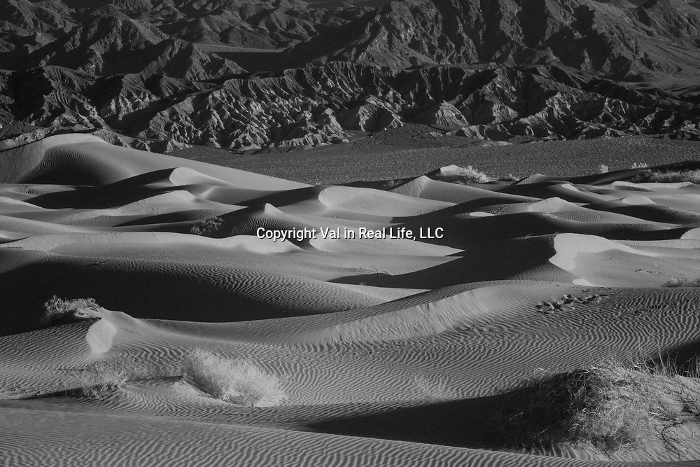 Mesquite Sand Dunes in Infrared at Death Valley National Park