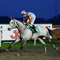 Kempton 6th January
