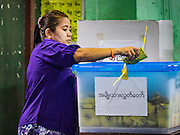 08 NOVEMBER 2015 - YANGON, MYANMAR: A woman drops her ballot into the ballot box just before the polls closed at her polling place in Yangon. The citizens of Myanmar went to the polls Sunday to vote in the most democratic elections since 1990. The National League for Democracy, (NLD) the party of Aung San Suu Kyi is widely expected to get the most votes in the election, but it is not certain if they will get enough votes to secure an outright victory. The polls opened at 6AM. In Yangon, some voters started lining up at 4AM and lines were reported to long in many polling stations in Myanmar's largest city.    PHOTO BY JACK KURTZ