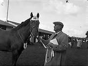 "19/09/1960<br /> 09/19/1960<br /> 19 September 1960<br /> Goffs September Bloodstock Sales at Ballsbridge, Dublin. The Ballsbridge September Yearling Sales opened in Dublin and attracted many international racing personalities. Picture shows Mr Neil McCarthy, California, with a chestnut yearlingg filly, sired by ""Alycidon"" out of ""June Ball"", which he bought for 6,200 Guineas, the highest price of the day, sent up by Mr J.P. Frost, Limericl."