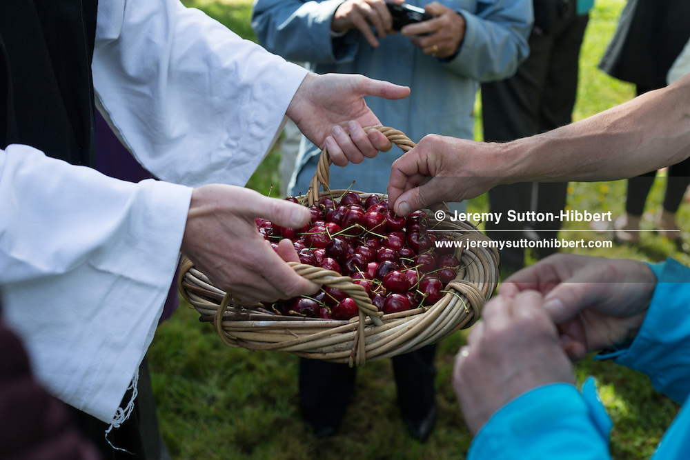 A stop during The Tour Of Ceremonies in Gattonside to commemorate the days when the lay brother monks of Melrose cultivated their fruits there, with Melrosian Sam Thomson being gifted cherries by a Gattonside resident dressed as a monk, during the Melrose Festival, near Melrose, Scotland, Saturday 22nd June 2013. <br /> N55&deg;36.371'<br /> W2&deg;43.690'