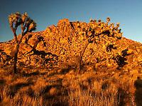 Sunset Alpenglow Light on Boulders, Joshua Tree National Park, California