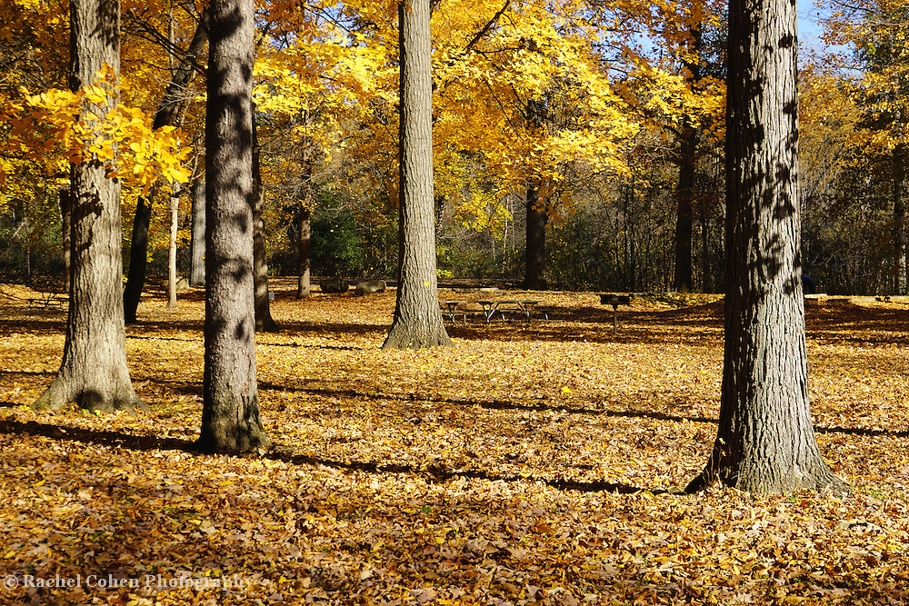 &quot;Reaching my Peak&quot; <br />