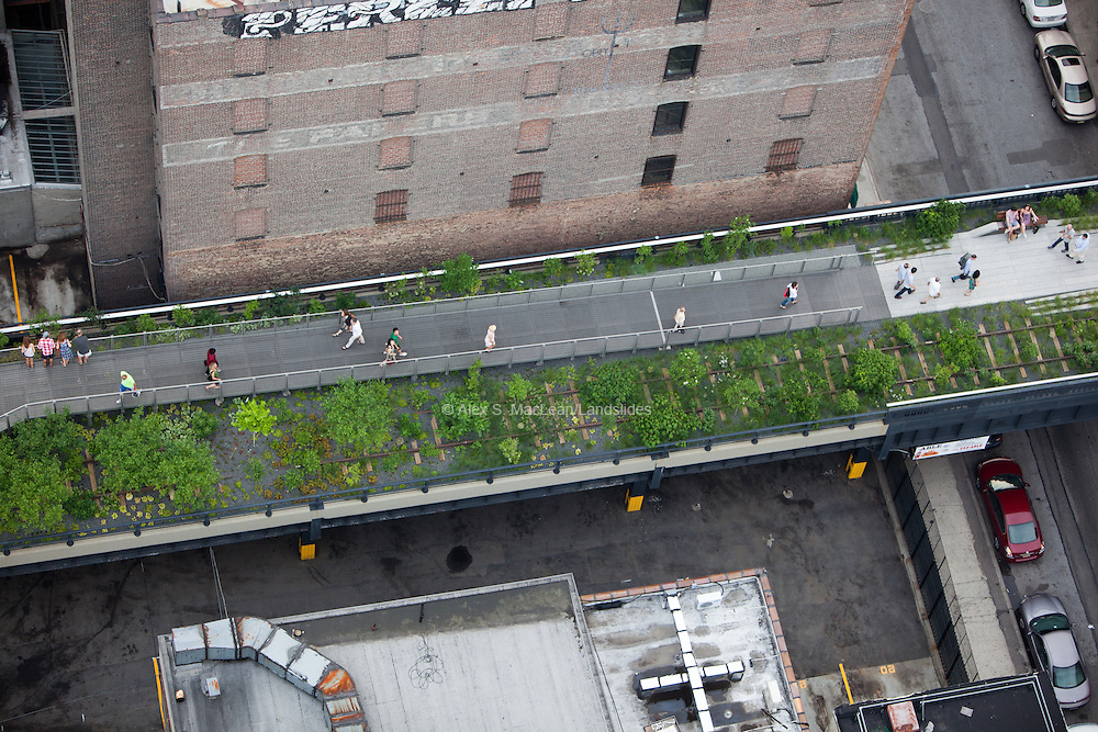 The High Line plantings and walkway