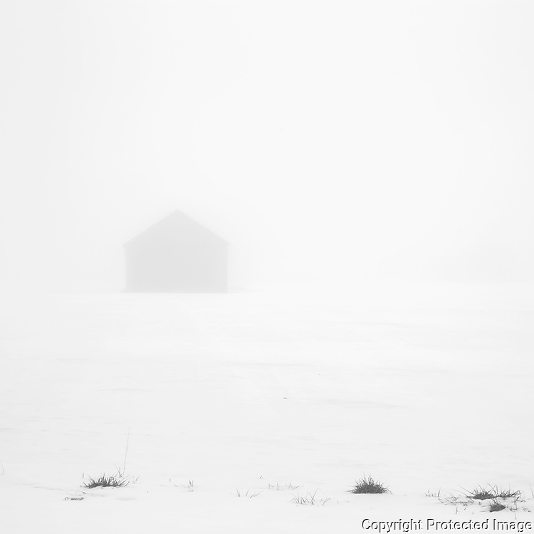 A cold and foggy winter day in western Massachusetts will yield any number of views of wonderful tobacco barns like this one.