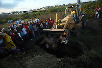 A horse is buried after being killed during the annual Corralejas in Sincelejo, Colombia on Friday, January 18, 2008. The corraleja, a bullfighting ritual in northern Colombia pitting hundreds of amateur matadors, many in advanced stages of inebriation, against a 900-pound bull. Regarded in other parts of Colombia as a bizarre spectacle, the corralejas are passionately defended by people of the northern savannas, an impoverished region. (Photo/Scott Dalton).