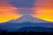 Mount Hood 3,426m (11,239ft) at sunrise, viewed from Mount Tabor Park in Portland.  The left skyline is Cathedral Ridge, and the right skyline is the Southeast Ridge.  The bulge in the Southeast Ridge is called the Steel Cliff.  Mount Hood is a stratovolcano in the Cascade Volcanic Arc of Northern Oregon.  The mountain's twelve glaciers are thinning as a result of glacial retreat attributed to Global Warming associated with World Climate Change.  Nikon D700. Nikon AF Nikkor 300mm f/4 IF-ED.