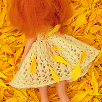 Girl doll with white knitted dress and ginger hair lying face down in bed of yellow Chrysanthemum petals