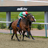 Mossy's Lodge - William Carson wins from Lady lloyd - Luke Morris<br /> The £10 Free At 32Red.com Median Auction Maiden Fillies´ Stakes<br /> Lingfield Park<br /> 17/2/16.<br /> ©Cranhamphoto.com
