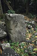 Petroglyph, Taaoa meae (temple), Hiava Oa, Marquesas, French Polynesia<br />