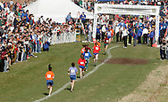 Warwick, N.Y. - Runners near the finish line during a girls' race at the New York State Public High School Athletic Association cross country championships at Sanfordville Elementary School on Nov. 11, 2006.<br />