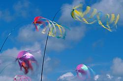 North America, USA, Washington, Long Beach. Kites on the beach