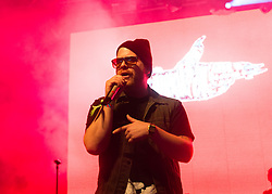 © Licensed to London News Pictures. 06/06/2015. London, UK.   Run the Jewels performing live at Field Day Festival Saturday Day 1.   In this picture - El-P. Run the Jewels is an American hip hop duo composed of  rapper/music producer El-P and rapper Killer Mike.  Photo credit : Richard Isaac/LNP