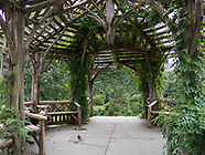 Central Park-Dene