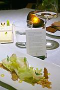 """Vienna, Austria. The """"Steirereck"""" with award winning Chef Heinz Reitbauer Junior is probably Vienna's best restaurant.<br /> Endiviensalat mit Knollen-Sauerklee, Kräuterseitlingen & Persischen Limetten (Endive with Wood Sorrel Root, King Trumpet Mushrooms and Persian Lime.)"""