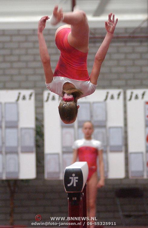NLD/Huizen/20050603 - Turnen, 1/2 Finale Topsport, brug