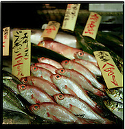 Fish arrayed for sale in a Tokyo department store, Japan.
