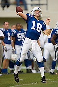 JACKSON, MS - AUGUST 26:  Quarterback Peyton Manning of the Indianapolis Colts throws passes during warmups before the game against the New Orleans Saints on August 26, 2006 at Veterans Memorial Stadium in Jackson, Mississippi.  The Colts won 27 to 14.  (Photo by Wesley Hitt/Getty Images) *** Local Caption *** Peyton Manning