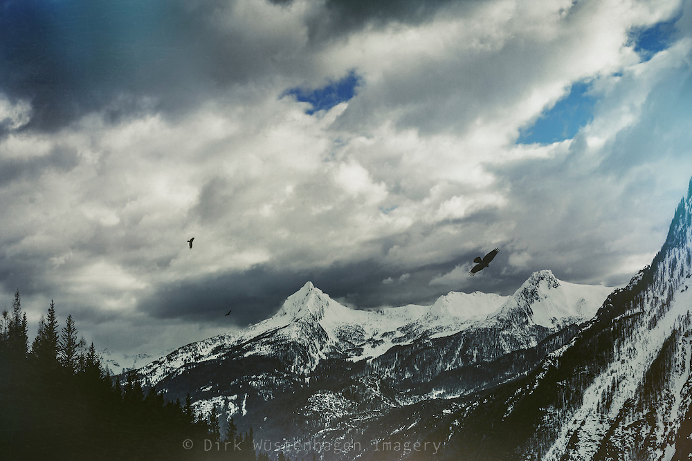Snow capped Alps near Chiesa in Valmalenco/Italy at the end of Winter<br /> Society6 Products: http://bit.ly/2ht2JiM