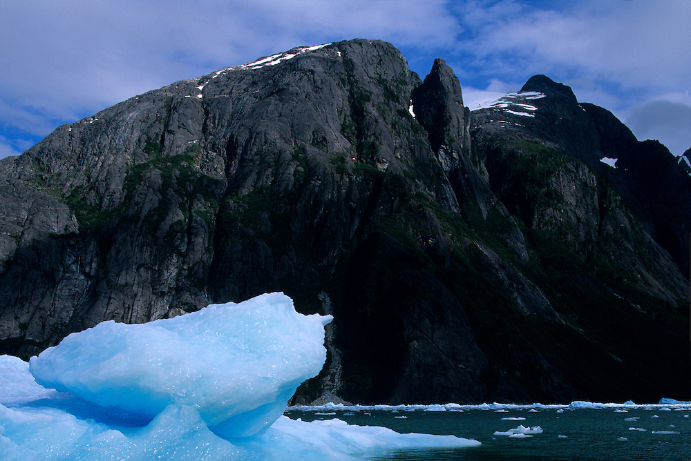 USA, Alaska, Tongass National Forest, Blue icebergs float in fjord near face of Le Conte Glacier on summer afternoon