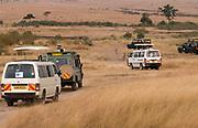 Tourists on game-drive following three cheetahs in Maasai Mara, Kenya.