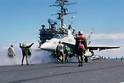 F18 on cat