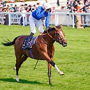Barney Roy (J. Doyle) (white cap) wins Gr.1 St James's Palace Stakes, Ascot 20/06/2017, photo: Zuzanna Lupa / Racingfotos.com