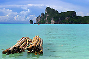 logs in the water, The beach at Koh Pi PI, Thailand