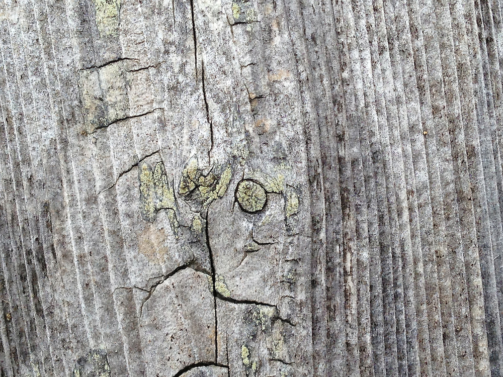 Wood Detail, Castine, Maine, US