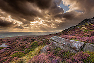 View of heather moorland at Stanage Edge with storm clouds overhead, Peak District National Park, UK, September