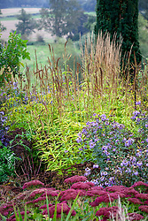 Autumn foliage colour and seedheads of Veronicastrum virginicum 'Lavendelturm' - Culver's root - with asters and sedums