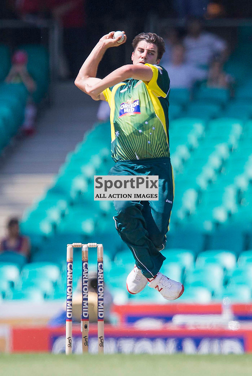 Carlton Mid One-Day International  Series 2014-15, Australia v South Africa, Sydney Cricket Ground; 23rd November 2014<br /> Australian Pat Cummins