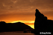 sunrise at Pinnacle Rock, Bartolome Island, Galapagos Islands, Ecuador, ( Eastern Pacific Ocean )