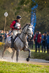Heffernan Andrew, NED, Gideon<br /> Mondial du Lion - Le Lion d'Angers 2018<br /> © Hippo Foto - Dirk Caremans<br /> 20/10/2018