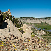 spring flowers along the upper missouri river breaks national monument wild scenic view from high above the river