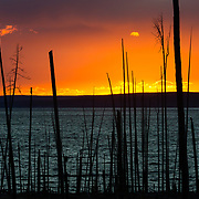 A dramatic abstract sunset over Yellowstone Lake with fire-burned trees in the foreground.