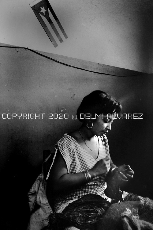 Portfolio Delmi Alvarez